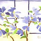 Dogwood in the Window by KipDeVore