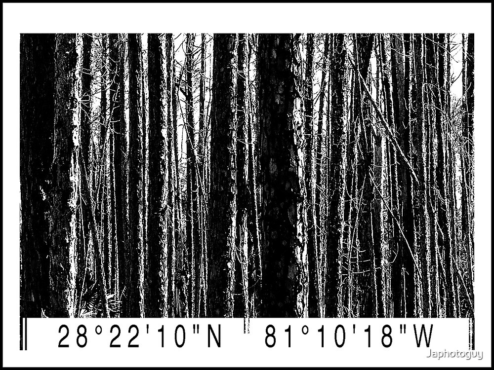 Nature's Barcode by Japhotoguy