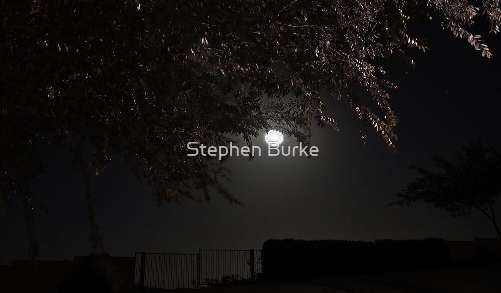 Night Fall by Stephen Burke