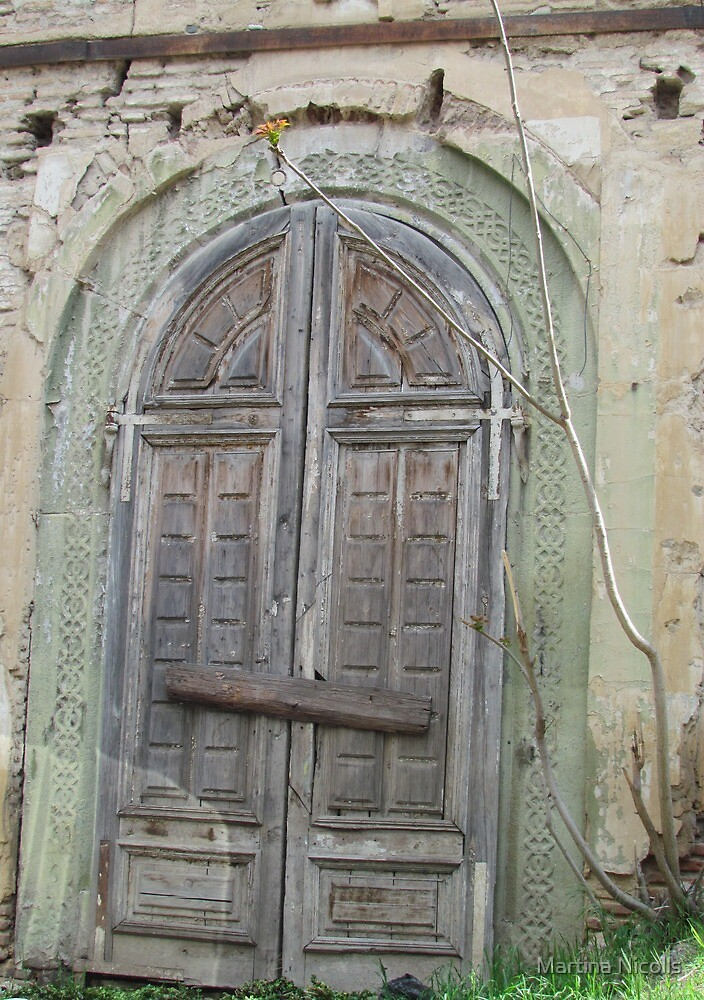 The door to Tbilisi, Georgia by Martina Nicolls