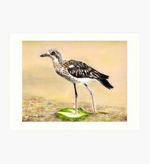 Curlew Art Print