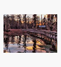 Twilight Sparkles over Cattail Trail Photographic Print