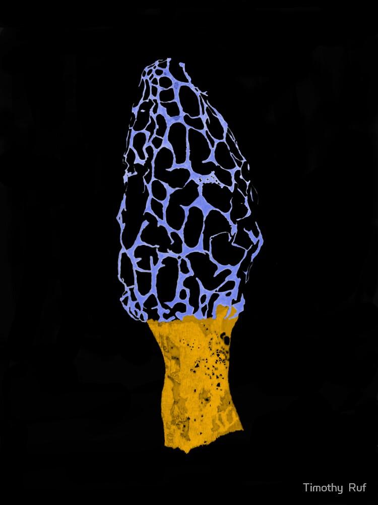 Black Velvet Morel by Timothy  Ruf