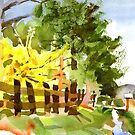 Forsythia in Bloom in Watercolor by KipDeVore