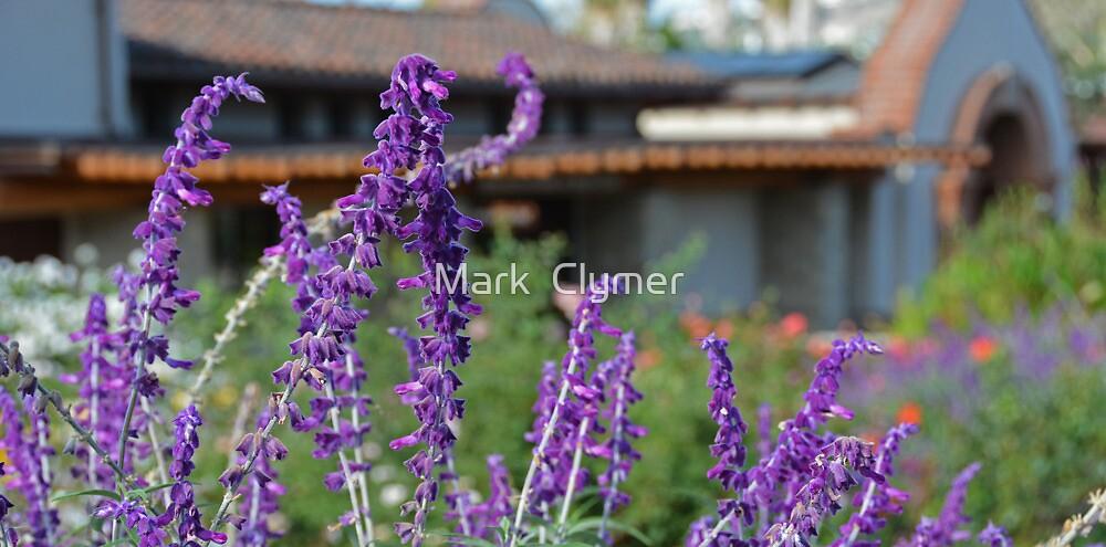 Lavender  by Mark  Clymer