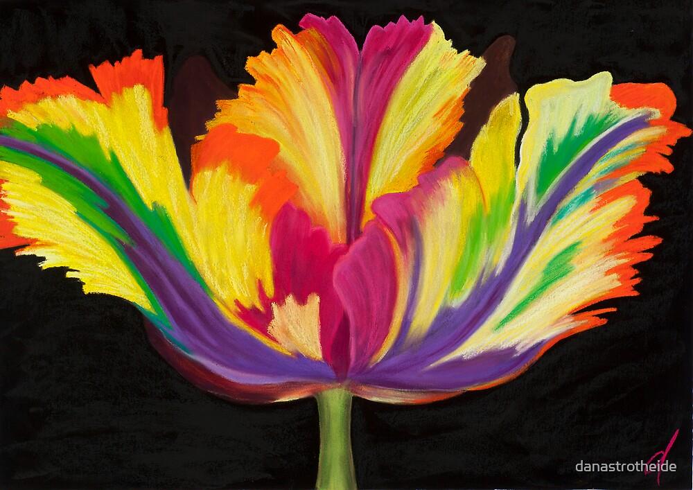 Parrot Tulip #2 by danastrotheide