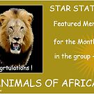 FEATURED MEMBER BANNER by Magriet Meintjes