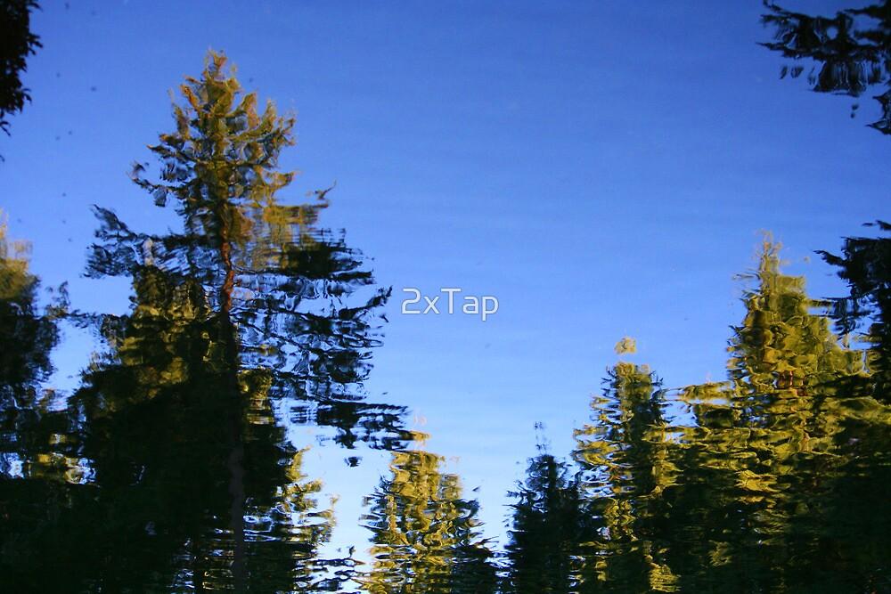 Observer Effect by 2xTap