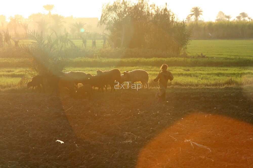 Young Herder by 2xTap