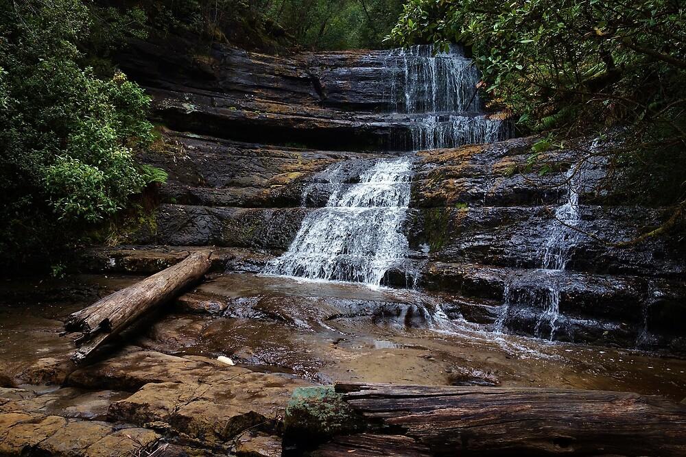Waterfall, Tasmania by Miranda Fittock