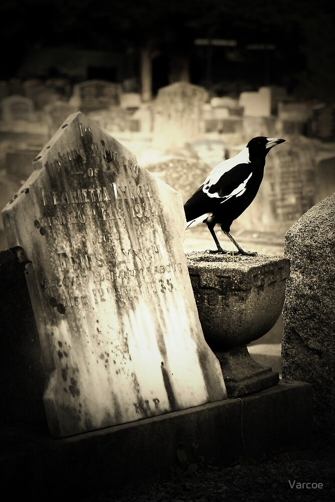 Life in the Graveyard. by Varcoe