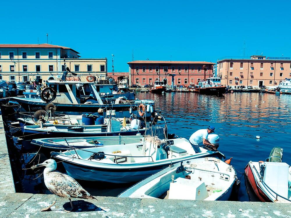 My Town, Livorno by GiacomoQ