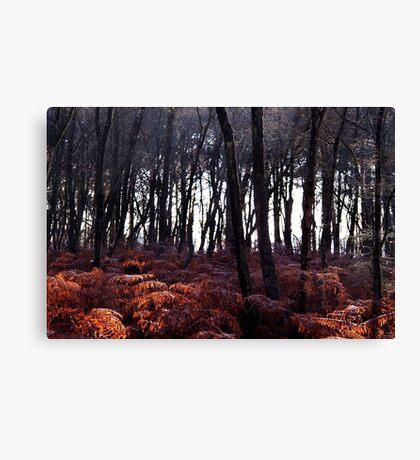 Autumn Morning - Bucklebury Canvas Print