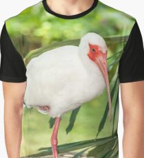 Ibise Graphic T-Shirt