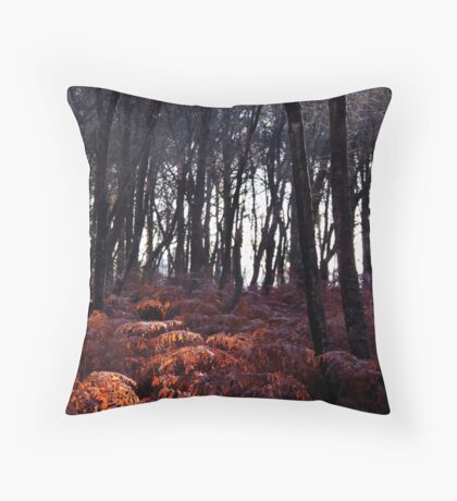Autumn Morning - Bucklebury Throw Pillow