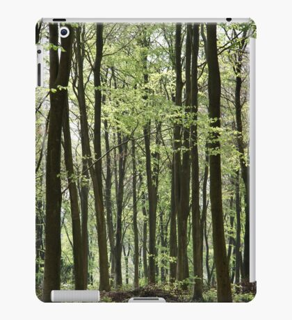 Path Through The Wood iPad Case/Skin