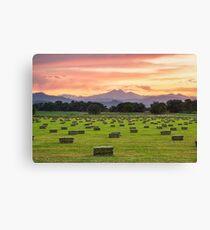 Colorado Farmers Burning Sunset Canvas Print