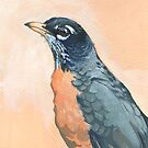 american robin by thoughtsupnorth