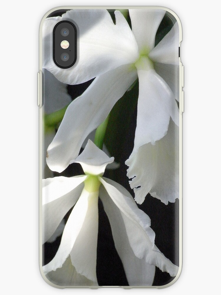 cattleya orchid phone case by Floralynne
