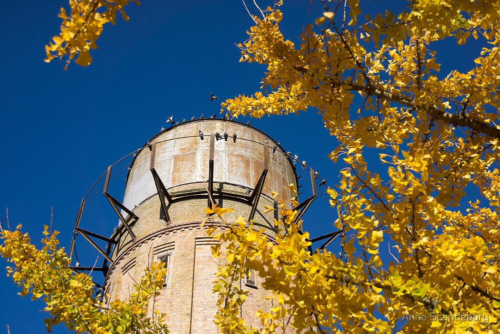 water tower by Anne Scantlebury
