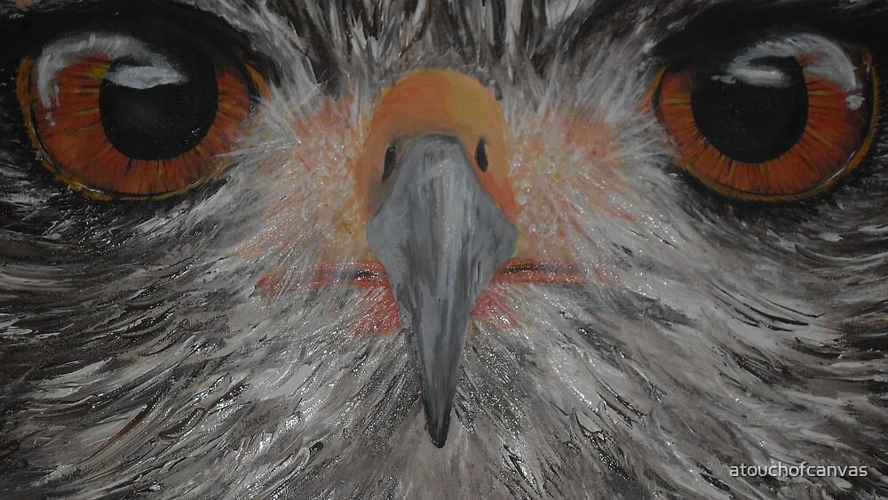 eagle eye by atouchofcanvas