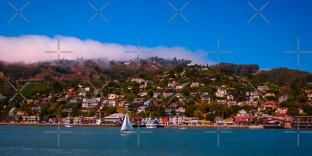 Summertime in Sausalito Canvas Print, Photographic Print, Art Print, Framed Print, Metal Print, Greeting Card, iPhone Case, Samsung Galaxy Case, iPad Case, Throw Pillow, Tote Bag, by David Millenheft Photography