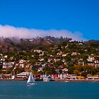 Summertime in Sausalito Canvas Print, Photographic Print, Art Print, Framed Print, Metal Print, Greeting Card, iPhone Case, Samsung Galaxy Case, iPad Case, Throw Pillow, Tote Bag, by damhotpepper