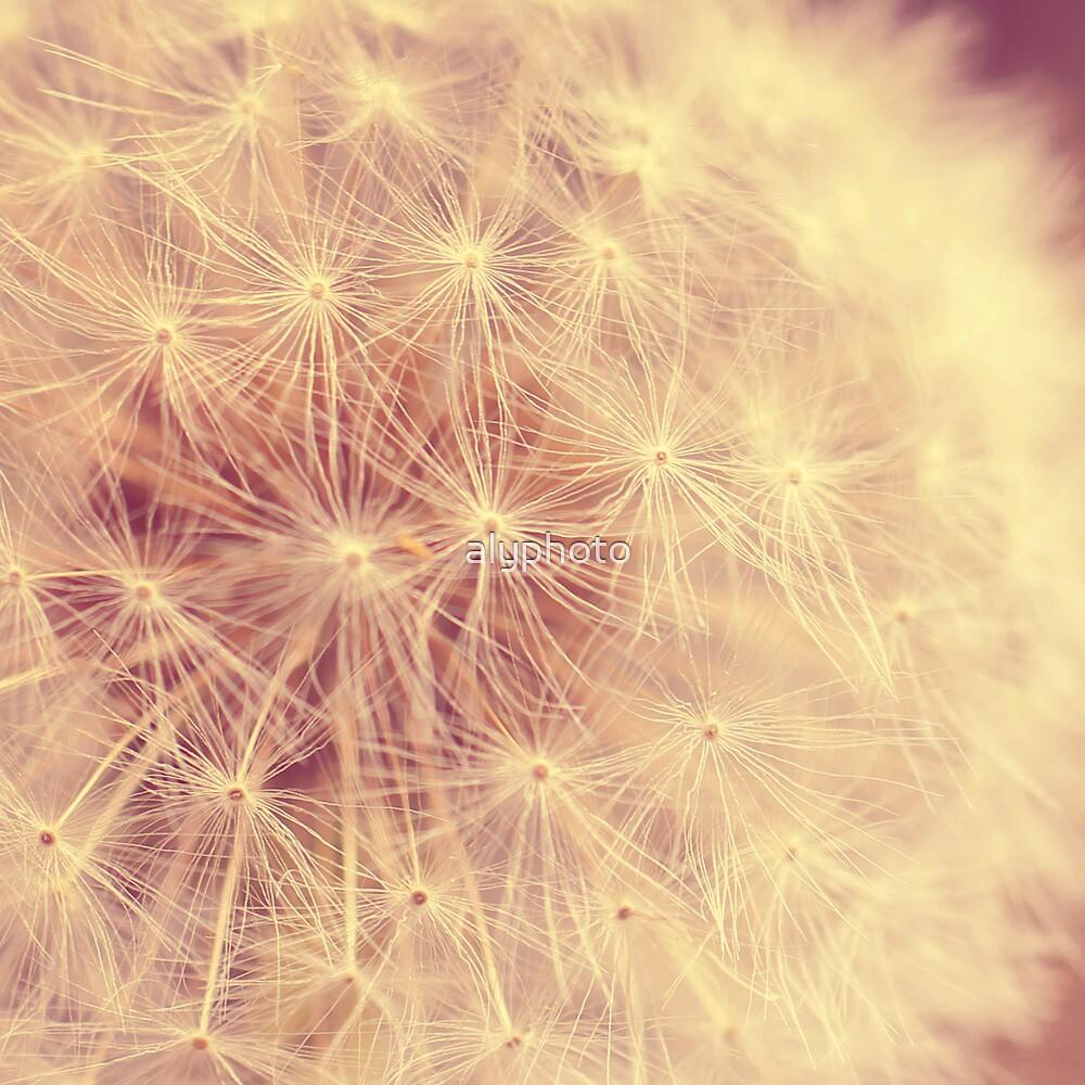 Wishing  by alyphoto