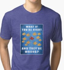 You're right, and they're wrong? Tri-blend T-Shirt