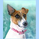 Jack Russell 1 by Redbarron