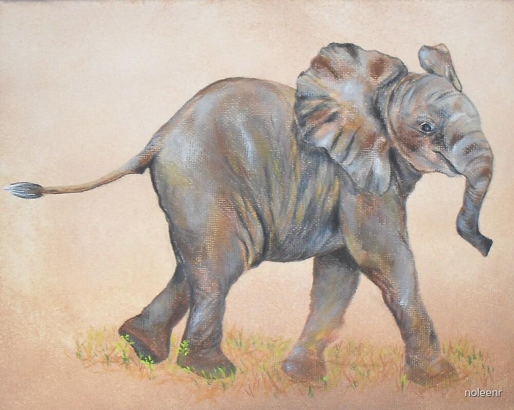 """Baby elephant"" by noleenr"