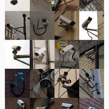 CCTV Cameras by JoeForrest