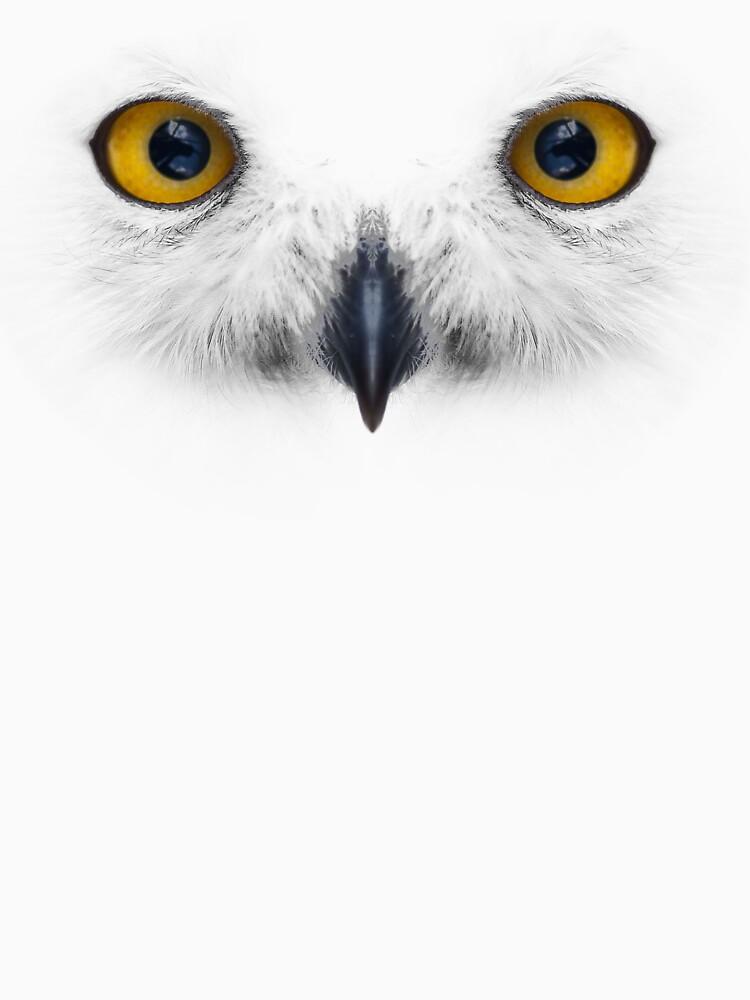 Snow Owl by imfine