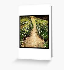Path of Flowers in Bloom Greeting Card