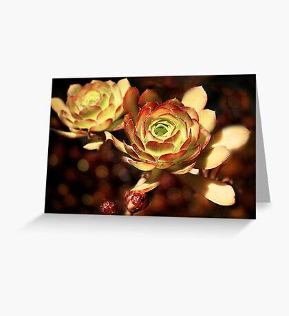 Desert Roses Greeting Card