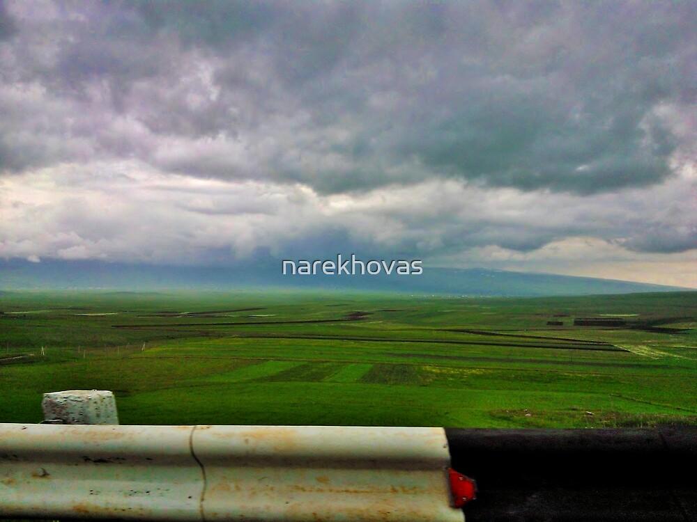 Freedom! by narekhovas
