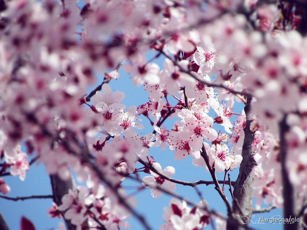 Spring by flarglesnargle