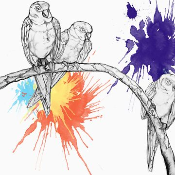 Birds2 by marp19c