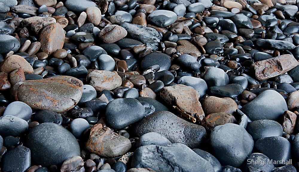 Rocky Shore 1 by Sheryl Marshall