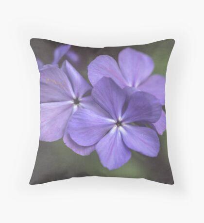 Phlox in the Evening Light Throw Pillow