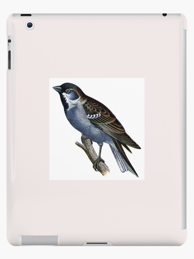 Vintage bird on twig by Marzipanlane