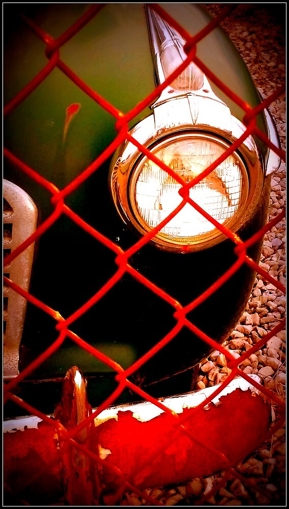 Caged Classic by deborahborn