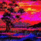 January sunset by catherine walker