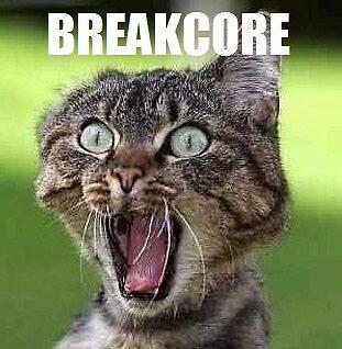 Breakcore Cat by captcouch