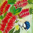 Blue Banded Bee Red Bottlebrush by Marg Pearson