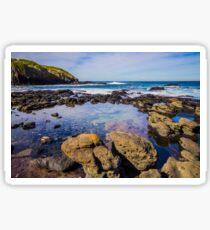 Rockpool at the Flinders Blowhole, Mornington Peninsula Sticker