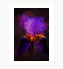 Risen from Stars. Cosmic Iris Art Print