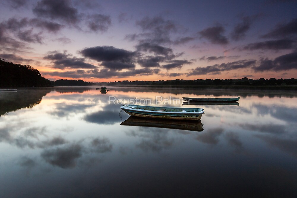 River Slaney - Wexford Ireland by Royston Palmer