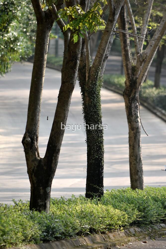tropical garden by bayu harsa