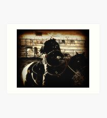 Cowboy Western Rodeo Horse Riding Vintage Look Art Print